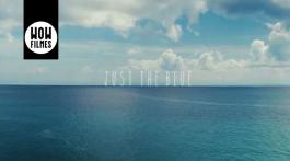 Video_JustTheBlue