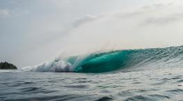 LB_Surftrip